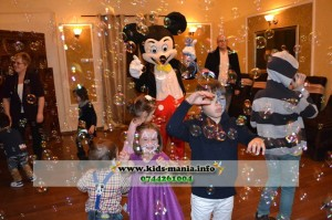 Mickey Mouse Iasi